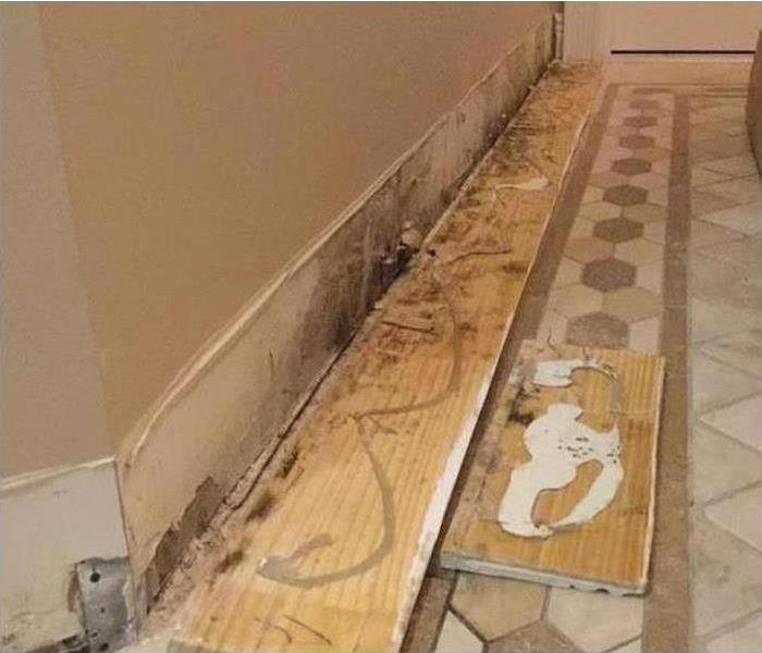 Cleaning mold behind baseboards Before