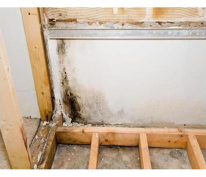 Water Damage The Hidden Dangers of Hidden Bathroom Leaks: Professional Water Removal Advice