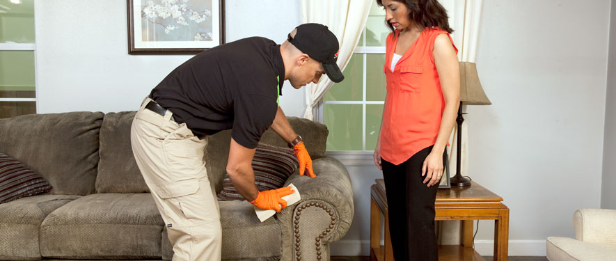 Thomaston, GA carpet upholstery cleaning